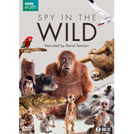 Spy In The Wild (BBC) (UK-import) (DVD)