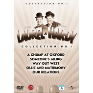 Laurel & Hardy Vol 1-5 (DVD)