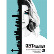 Grey's Anatomy - Sesong 13 (DVD)