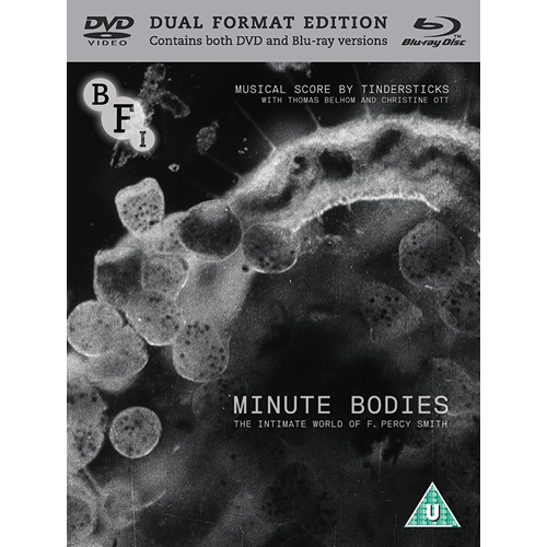 Minute Bodies: The Intimate World Of F. Percy (UK-import) (DVD + Blu-ray)