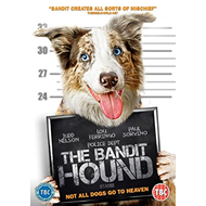 Produktbilde for The Bandit Hound (UK-import) (DVD)
