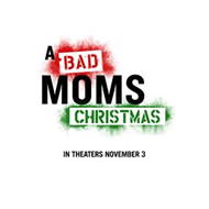Bad Moms 2 / A Bad Moms Christmas (DVD)