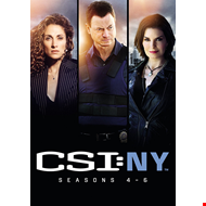 CSI New York - Sesong 4-6 (UK-import) (DVD)