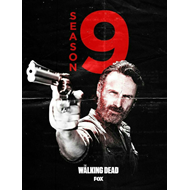 The Walking Dead - Sesong 9 (DVD)