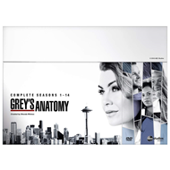 Grey's Anatomy - Sesong 1-14 (UK-import) (DVD)