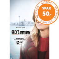 Grey's Anatomy - Sesong 15 (DVD)