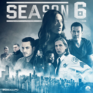 Chicago P.D. - Sesong 6 (DVD)