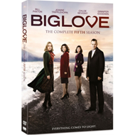 Produktbilde for Big Love: The Complete Fifth Season (UK-import) (DVD)