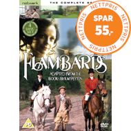 Produktbilde for Flambards: The Complete Series (UK-import) (DVD)