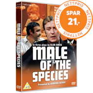 Produktbilde for The Male of the Species - Three Plays By Alun Owen (UK-import) (DVD)
