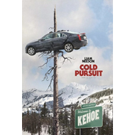 Cold Pursuit (DVD)