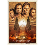 Supernatural - Sesong 15 (DVD)