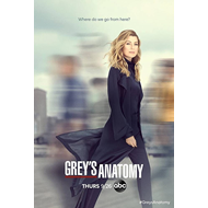 Produktbilde for Grey's Anatomy - Sesong 16 (DVD)