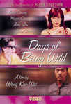 Days Of Being Wild (DVD - SONE 1)