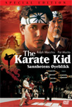 The Karate Kid - Sannhetens Øyeblikk - Special Edition (UK-import) (DVD)