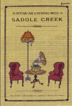 Spend An Evening With Saddle Creek: The First Ten Years Of Saddle Creek Records (DVD - SONE 1)