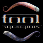 Produktbilde for Tool - Vicarious (DVD - SONE 1)