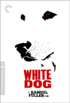 White Dog - Criterion Collection (DVD - SONE 1)
