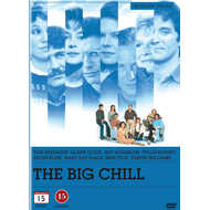 The Big Chill (DVD)