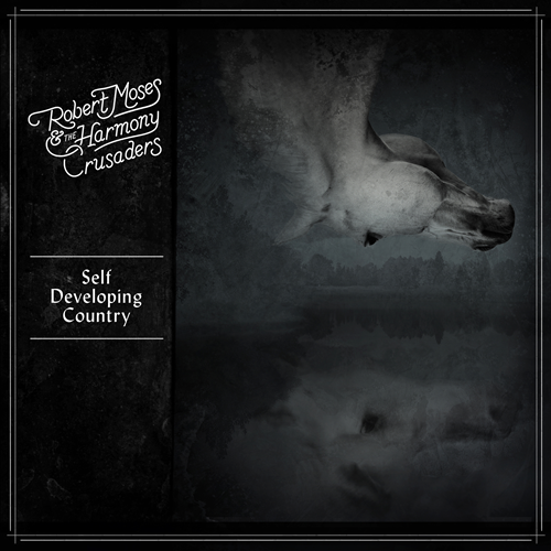 Self-Developing Country (VINYL)