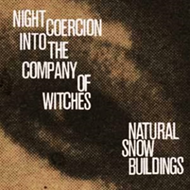 Night Coercion Into The Company Of Witches (VINYL - 4LP)