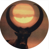 Shadows Of The Sun (VINYL - Picturedisc)