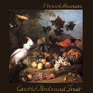 Exotic Birds And Fruit - Limited Edition (VINYL - 2LP - 140 gram - Rød)