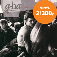 Hunting High And Low (VINYL - 180 gram)