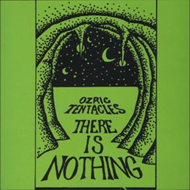 There Is Nothing (VINYL - 2LP - 180 gram)