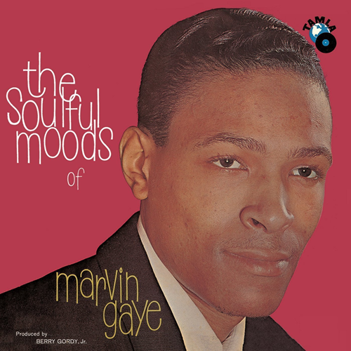 The Soulful Moods Of Marvin Gaye (VINYL)