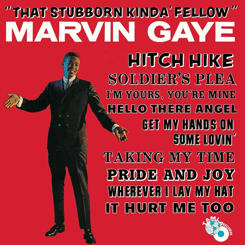 That Stubborn Kinda Fellow (VINYL)
