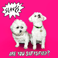 Are You Satisfied? (VINYL)