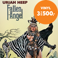 Produktbilde for Fallen Angel (VINYL - 180 gram)