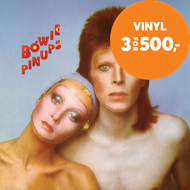 Produktbilde for Pin Ups (VINYL - 180 gram)