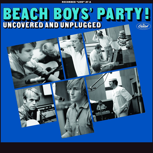 The Beach Boys Party! Uncovered And Unplugged (VINYL - 180 gram)