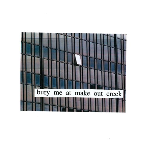 Bury Me At Makeout Creek (VINYL)
