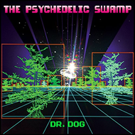 The Psychedelic Swamp (VINYL)