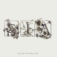 Colour The Small One (VINYL)