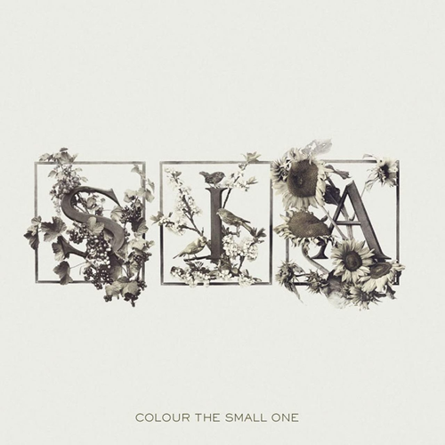 Colour The Small One (USA-import) (VINYL)