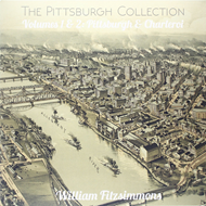 The Pittsburgh Collection Volumes 1 & 2: Pittsburgh & Charleroi (VINYL)