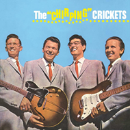 "The ""Chirping"" Crickets (VINYL)"