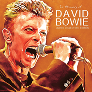 In Memory Of David Bowie - Limited Edition (VINYL)