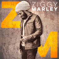Ziggy Marley (VINYL + CD)