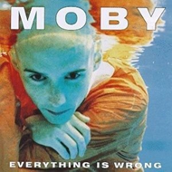 Everything Is Wrong (VINYL - 180 gram)