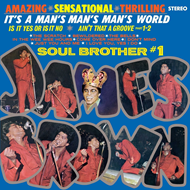 It's A Man's Man's Man's World (VINYL - 180 gram)