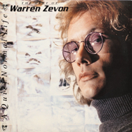 A Quiet Normal Life: The Best Of Warren (VINYL)