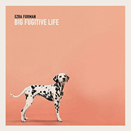 Big Fugitive Life Ep (VINYL)