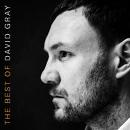 The Best Of David Gray (VINYL)