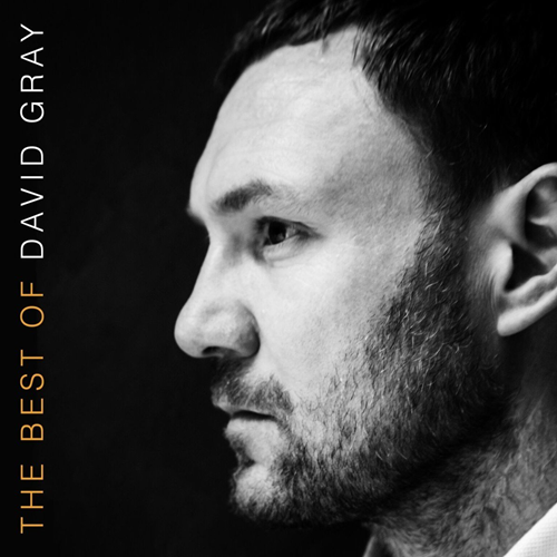 The Best Of David Gray (UK-import) (VINYL)