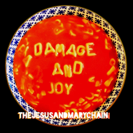 Damage And Joy (VINYL)